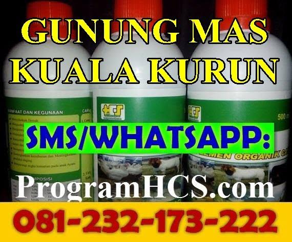 Jual SOC HCS Gunung Mas Kuala Kurun