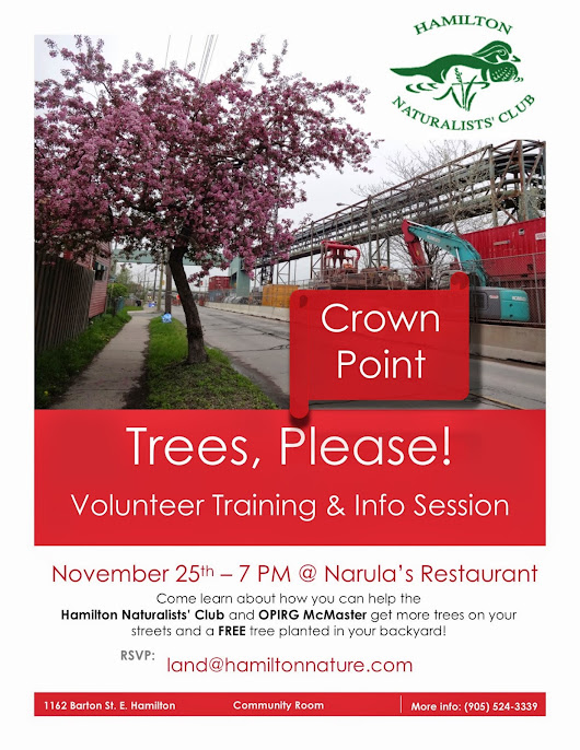 Crown Point: Trees, Please!