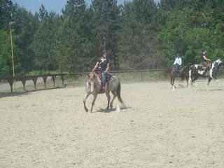 El Bronco, Unkari, Riitta Reissaa, Horsexplore