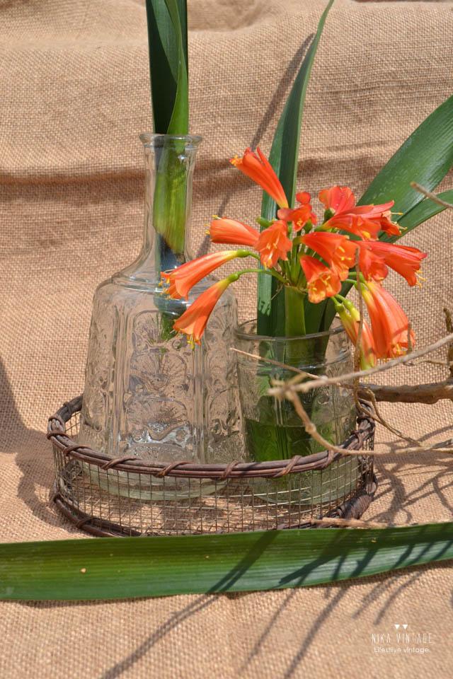 decoracion, must decorativos, tendencia decoracion, jarrones, cristal, jarron crista, arreglo floral, flamenco, loro, diy