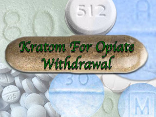 Kratom for Opiate Withdrawal