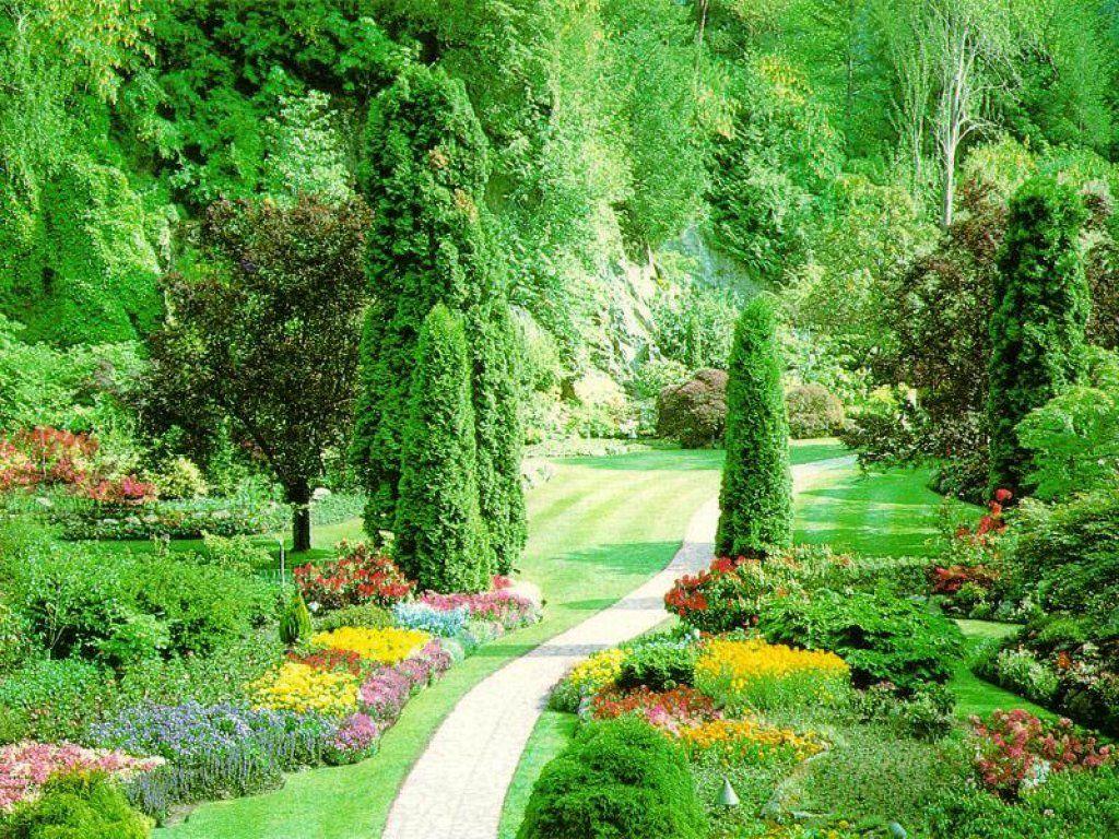 Beautiful flower garden | Amazing Wallpapers