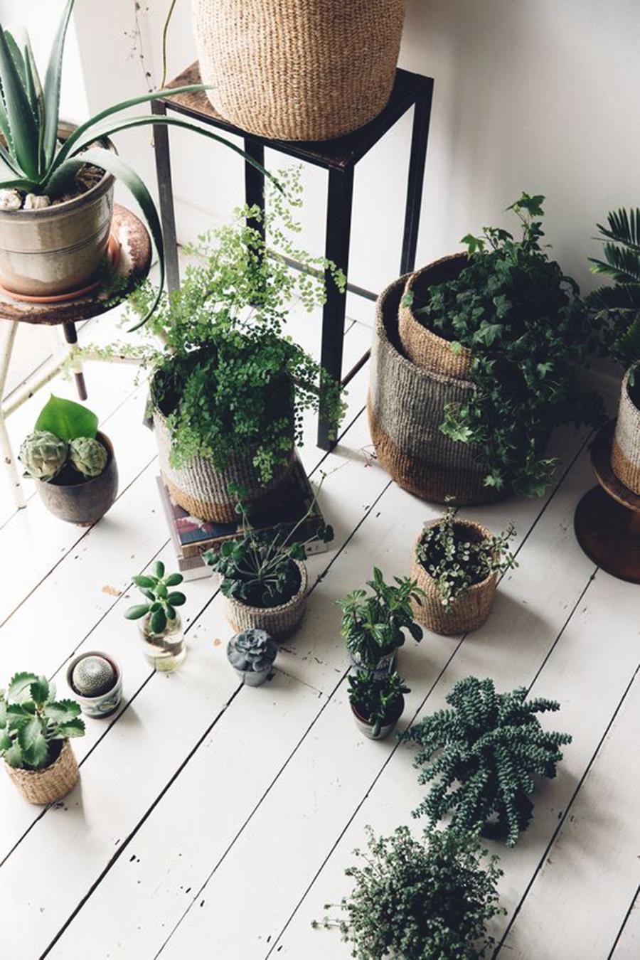 Inspiration | Flower Pot Game