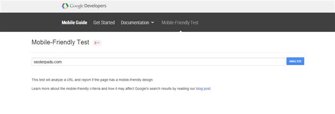 Webmaster Mobile-Friendly Test
