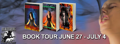 Bewitching Book Tours Spotlight: Daemon Persuasion Series by S.K. Gregory