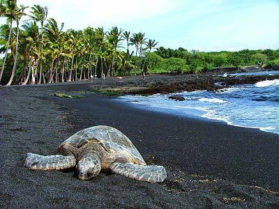 Playa de arena negra Punaluu