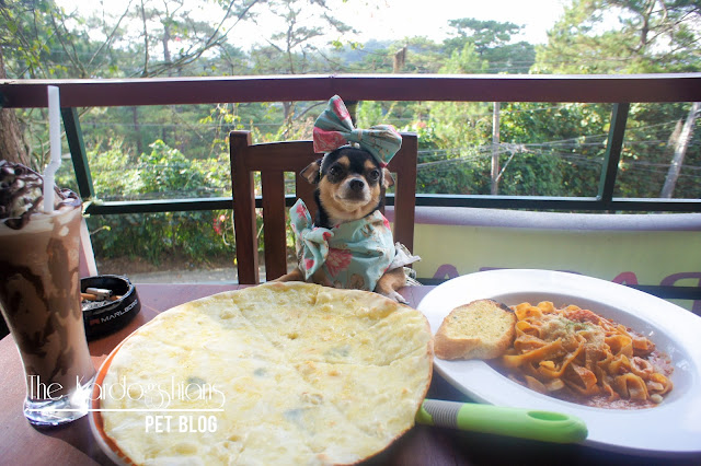 7 Famous Baguio Restaurants That Are Pet Friendly