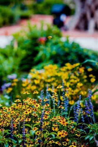 Ο κήπος με τα αγάλματα