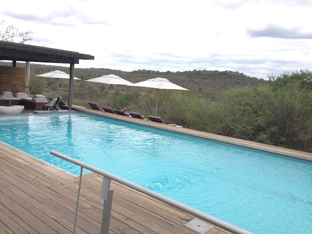 Pool, Infinity Pool, Bush, Wilderness