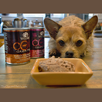 Wellness CORE Canned Dog Food review