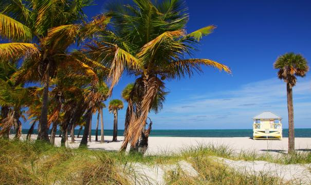Crandon Beach em Miami