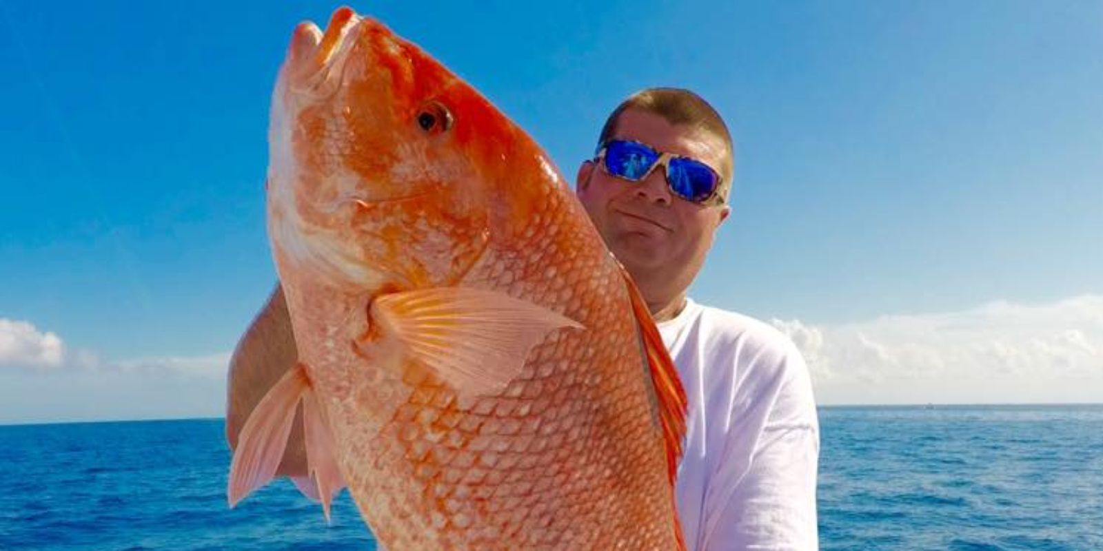 Red snapper length weight chart frozen red snapper red snapper you can make your own measurement of red snapper length weight chart with rules and pencil this will help you to compare your red nvjuhfo Images