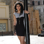 Taapsee Cute Saree Stills From Mr.Perfect Movie