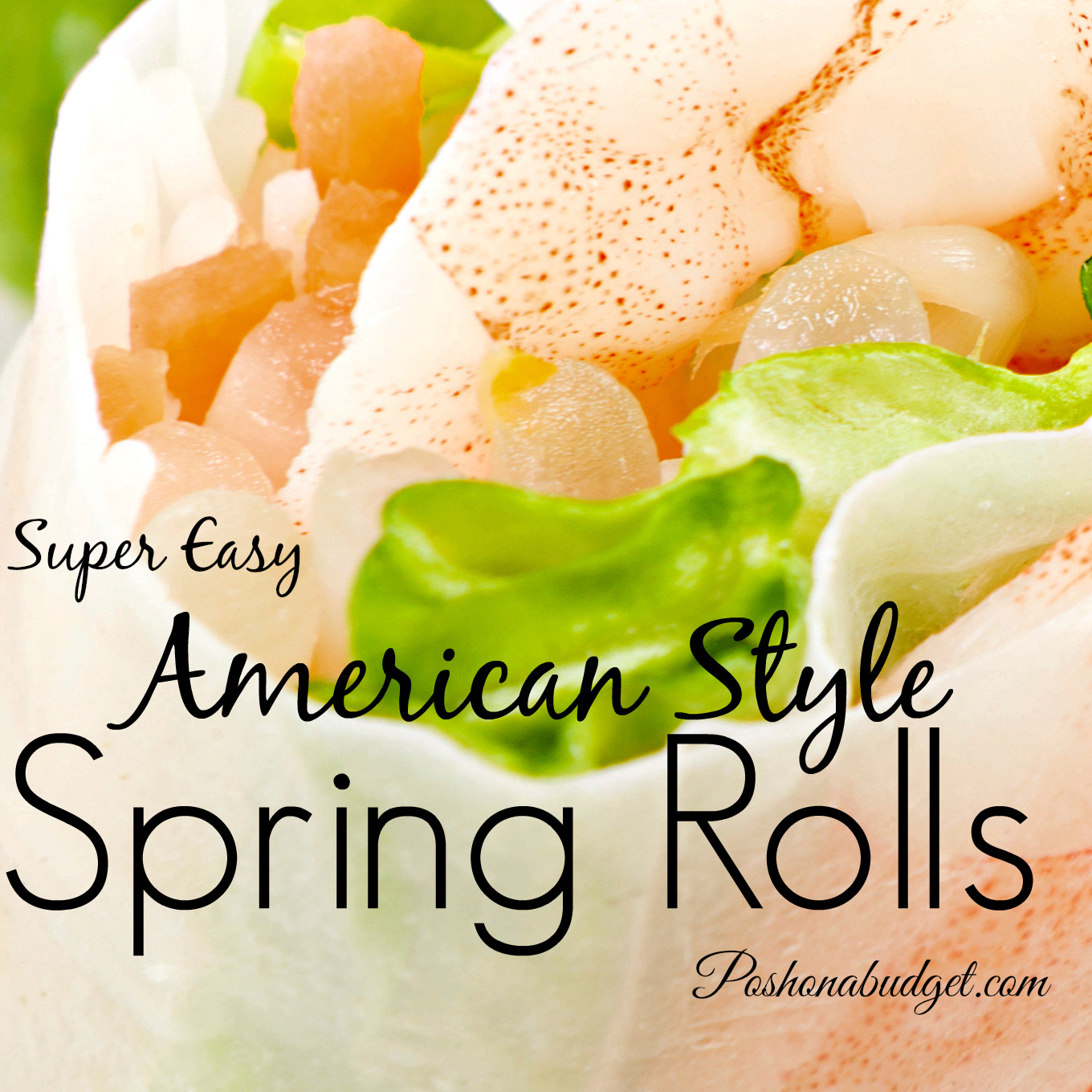 American Style Spring Rolls