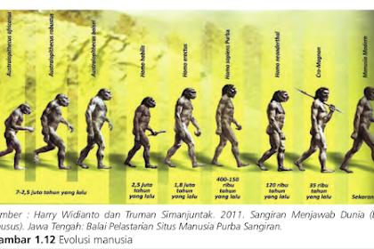 Mengapa hasil penelitian Dubois di Trinil disebut sebagai jenis Pithecanthropus erectus (kera yang berjalan tegak)?