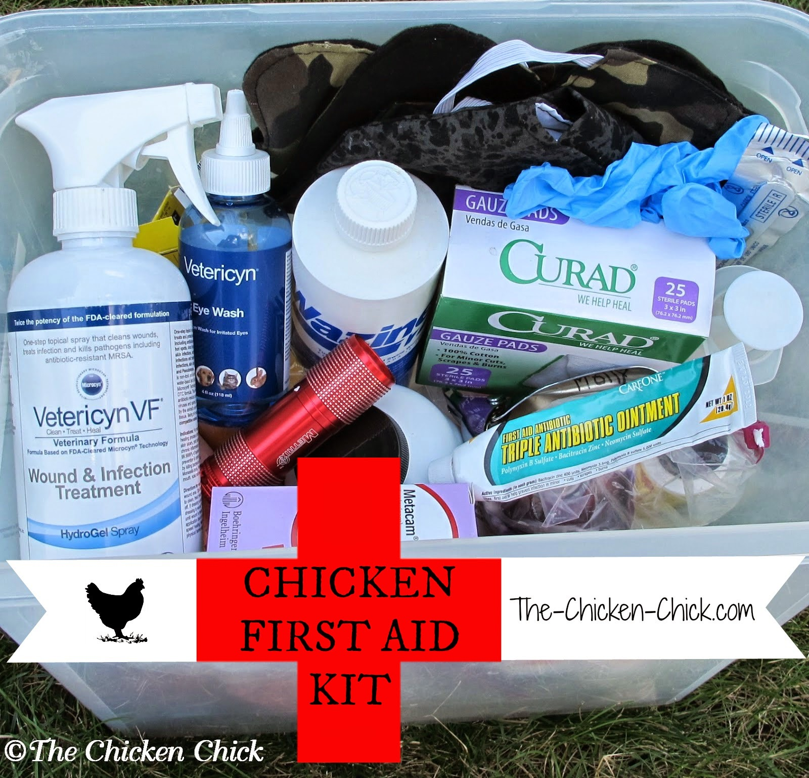 http://www.the-chicken-chick.com/2012/01/chicken-first-aid-kit-sick-bay-be.html