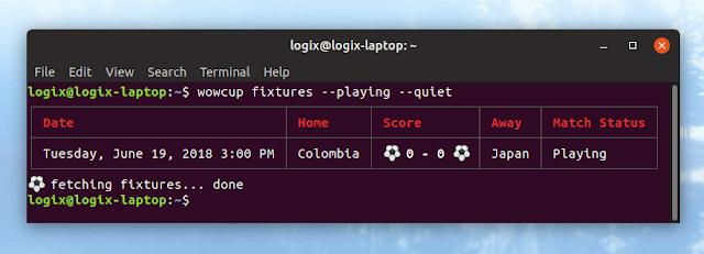 FIFA world cup command line score