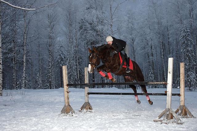 eef65b5961728c Equitazione e Cavallo: 7 cose che (forse) hai dimenticato delle ...