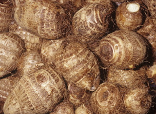 man jailed for stealing cocoyam