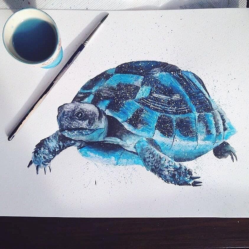 08-Blue-Tortoise-Kathrin-Schwarz-Animal-Paintings-in-Different-Styles-www-designstack-co