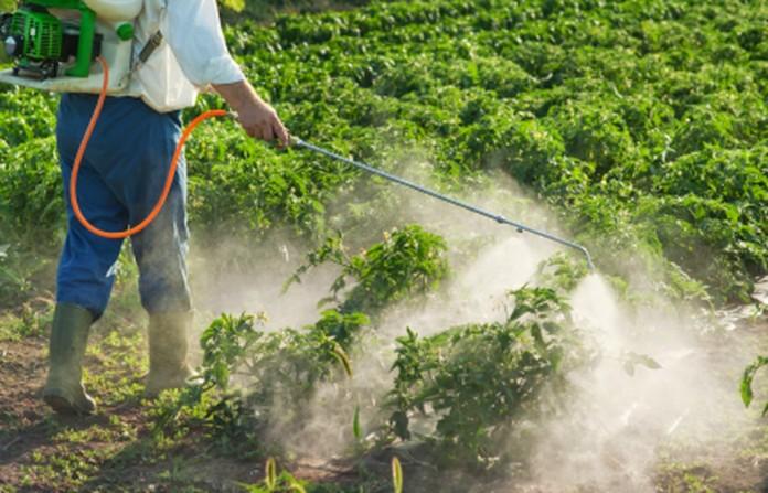 Glifosato a ser usado na agricultura