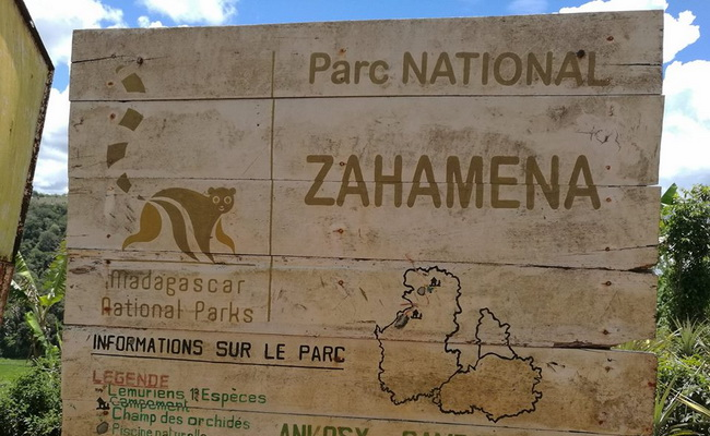 Xvlor Zahamena National Park