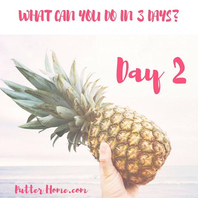 3 Day Refresh Review - Day 2, a detox and cleanse for your gut to promote healthy eating and weight loss | Putter Home