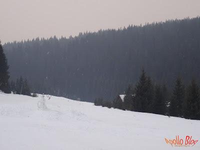 Om de zapada pe partia de schi