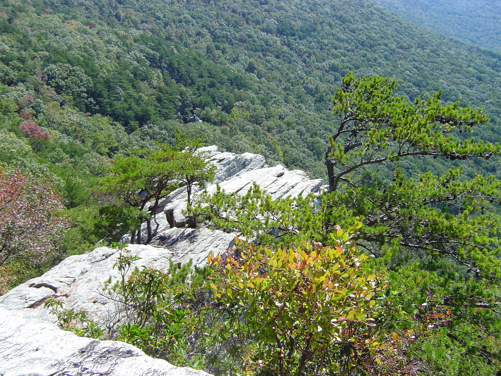 cheaha state park alabama