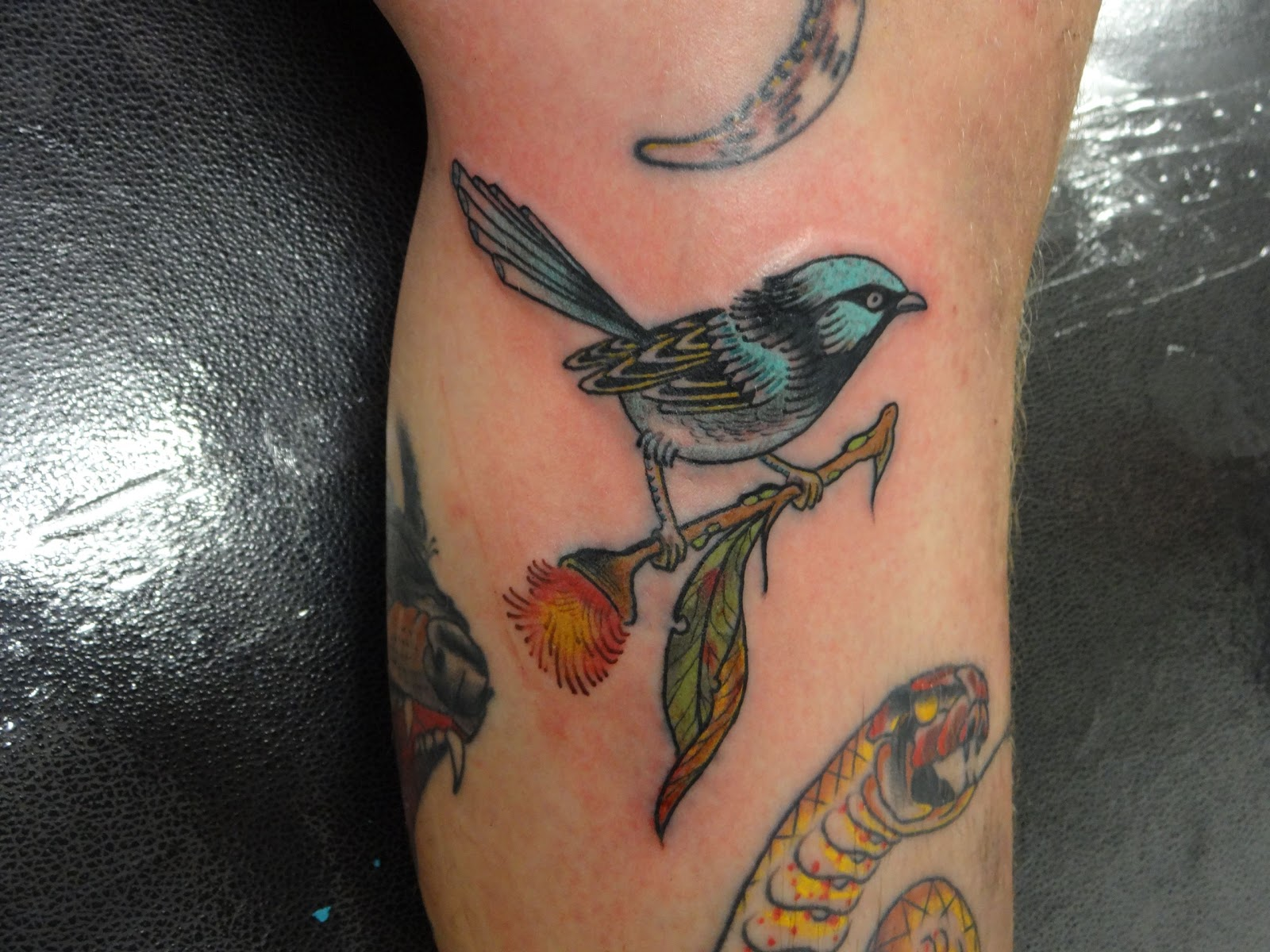 Fairy Wren Tatt...