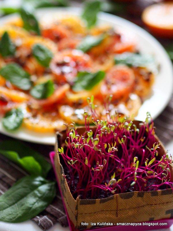 salata z cytrusow, cytrusy, kolorowe pomarancze, owoce poludniowe, kielki buraczka, micro buraczki