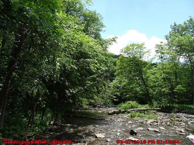 Pixley Falls Creek Boonville