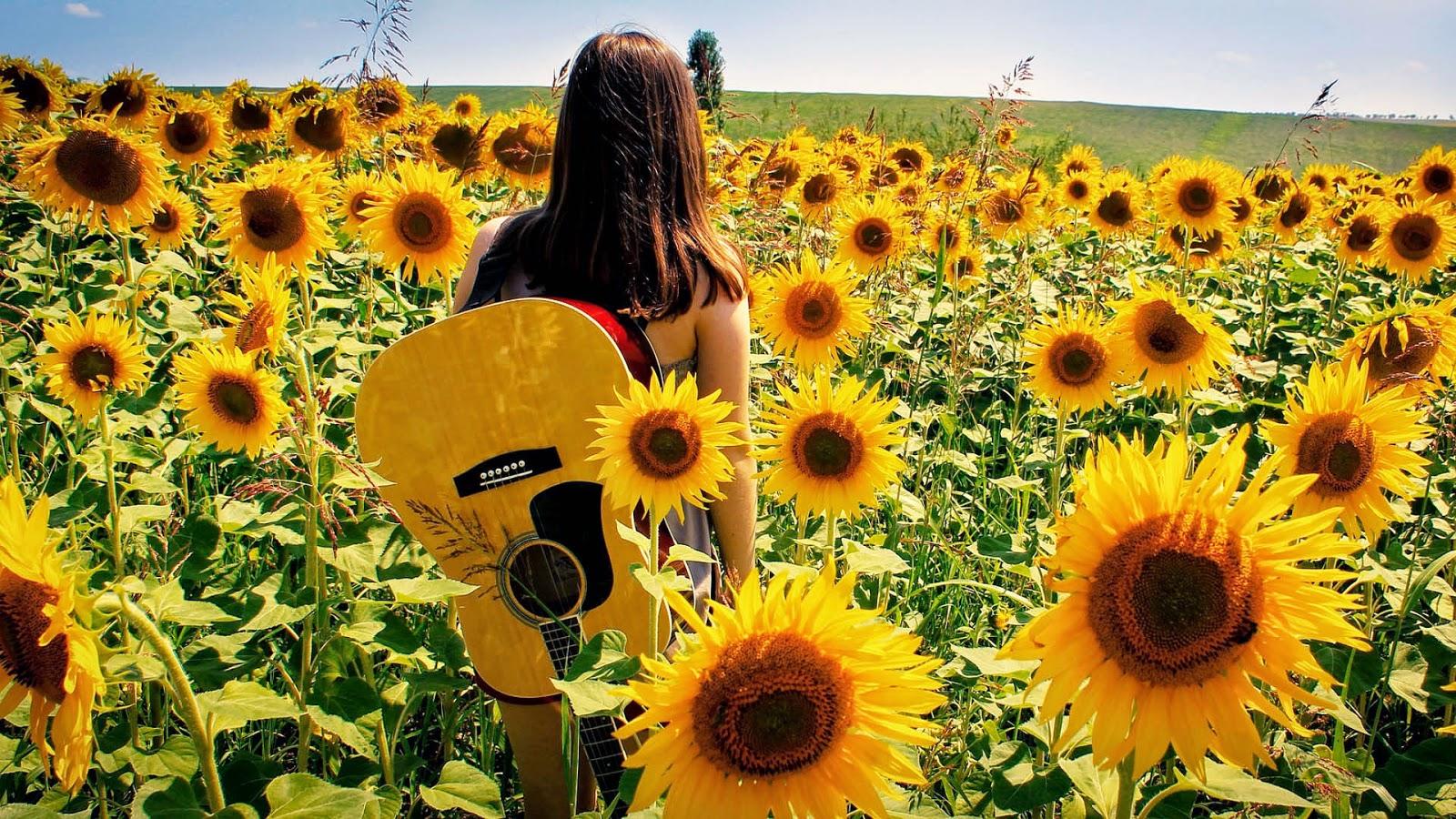 Vrouw met gitaar in een veld vol met zonnebloemen