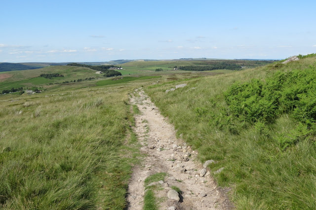 A path of rock and sand leads downwards through grassland on the periphery of the moor.