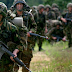 ¿Escisión en la OTAN?