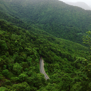 holiday packages in Wayanad