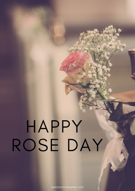 Rose Day Pics 2019
