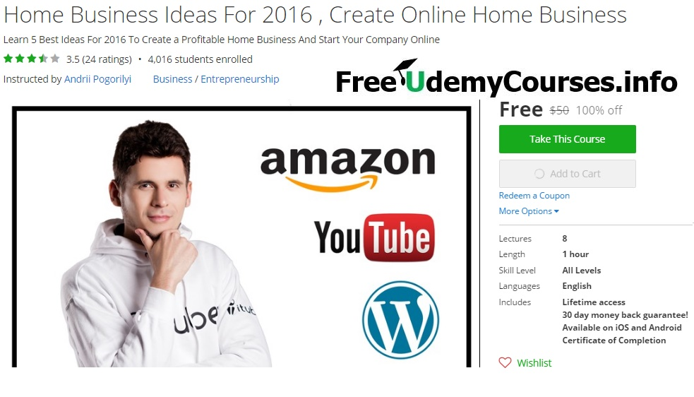 Best Internet Home Business Ideas Online Business