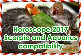 Horoscope 2017 Scorpio and Aquarius compatibility forecast