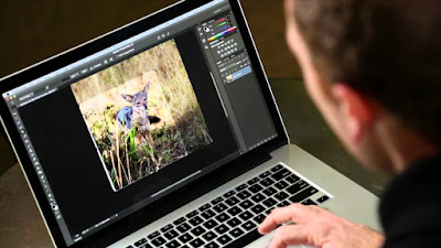 Belajar Tools Photoshop