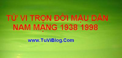 Tu Vi Tron Doi Mau Dan 1938 1998