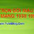 TỬ VI TRỌN ĐỜI TUỔI MẬU DẦN NAM MẠNG 1938 1998