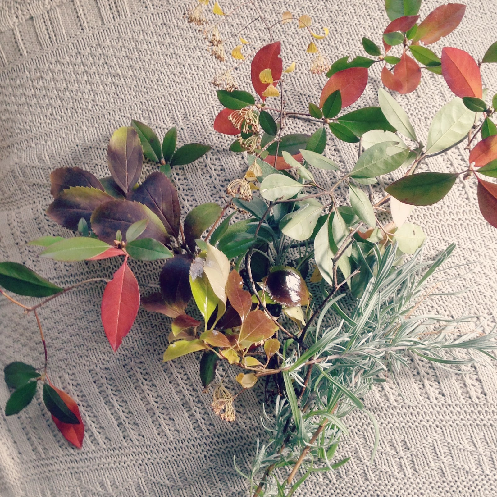 the magpie's fancy fall botanicals tips for arranging
