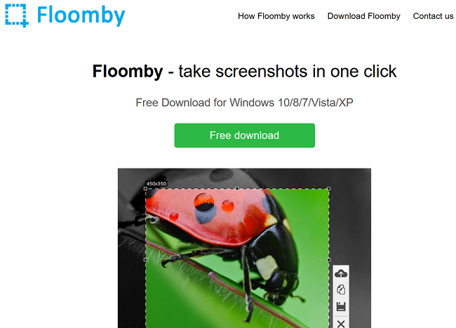 Floomby Review
