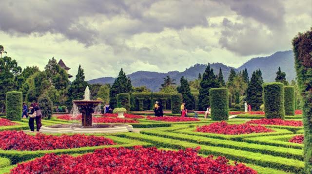 wisata, wisata kekinian, lembang, begonia, kota kembang,