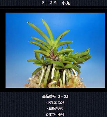 http://www.fuuran.jp/2-32.html