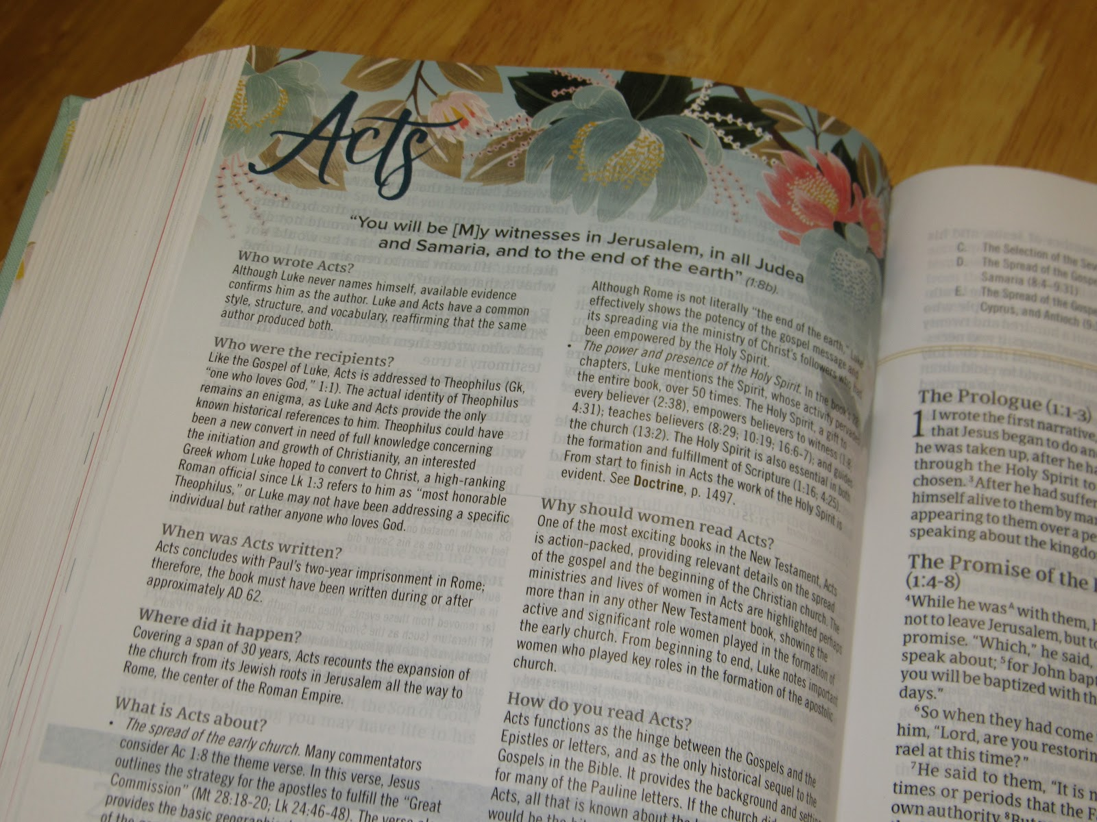 Mail4Rosey: CSB Study Bible for Women Giveaway: 7 Winners!