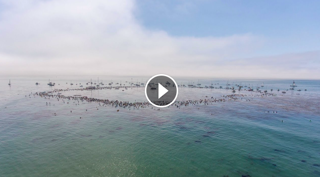 Jack O Neill Paddle Out Drone Footage Film World Record