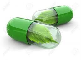 Obat gatal gatal kulit karena alergi yang paling ampuh