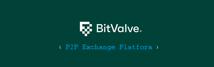 Get Affordable and Easy Solution with BitValve